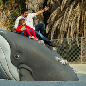Custom Themed Playground Along Pacific Coast in California gallery thumbnail
